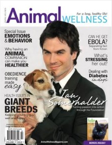 About in the media - article on dog anxiety